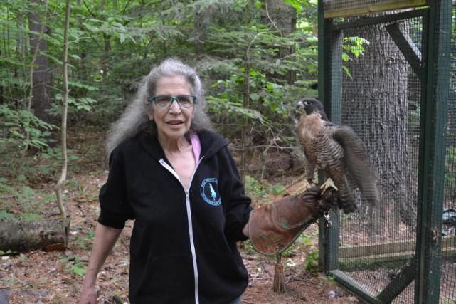 Selon Wendy Hall, cofondatrice du refuge, 95% des... (Photo MarilynnGuay-Racicot, collaboration spéciale)