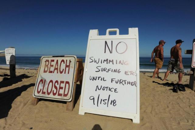 Un homme a été tué par un requin... (PhotoMerrily Cassidy, Associated Press)