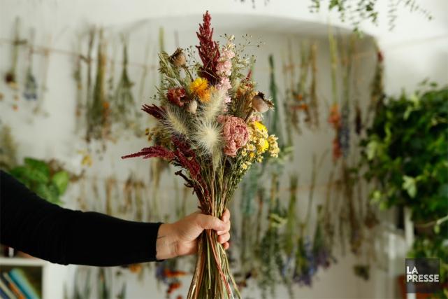 Avec la fin de l'été, les bouquets de fleurs séchées entrent dans les maisons.... (Photo Martin Chamberland, La Presse)