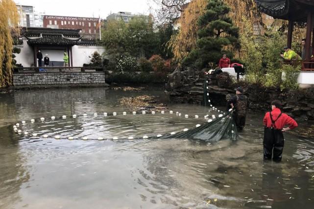 Les employés du jardin Docteur-Sun-Yat-Sen rempliront à nouveau... (PHOTO AFP)