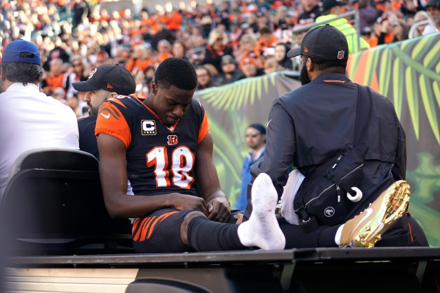 A.J. Green... (Photo Aaron Doster, USA TODAY Sports)
