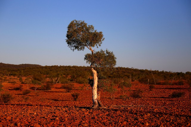 Un paysage du Queensland... (Photo DAVID GRAY, archives REUTERS)