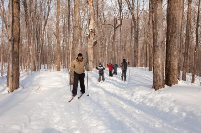 Journée de ski de fond au parc-nature du... (Photo fournie par le Parc-nature du Cap-Saint-Jacques)