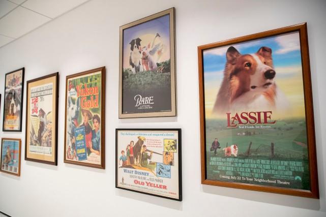 Quelques affiches de films mettant en vedette le... (Photo Mary Altaffer, AP)