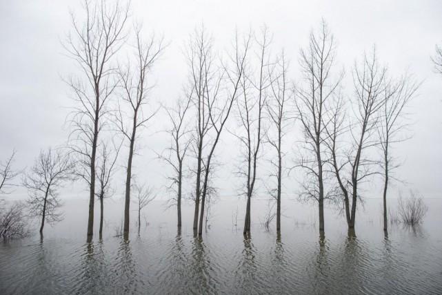 Le lac des Deux Montagnes, àVaudreuil-sur-le-Lac, inonde graduellement... (PHOTO DAVIDBOILY, LA PRESSE)