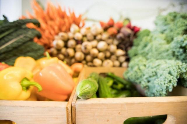 Le réchauffement de la planète menace notre assiette. MarianneLandzettel,... (PHOTO IVANOH DEMERS, ARCHIVES LA PRESSE)