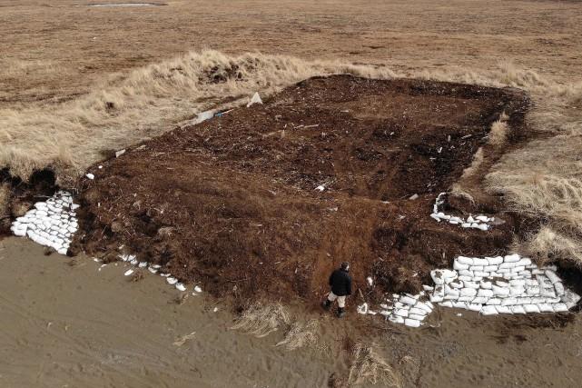 L'archéologue Rick Knecht au site d'excavation baptisé Nunalleq... (PHOTO MARK RALSTON, AGENCE FRANCE-PRESSE)