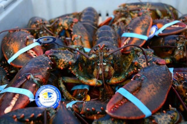 Les homards pêchés près des côtes gaspésiennes sont... (PHOTO TIRÉE DE FACEBOOK)