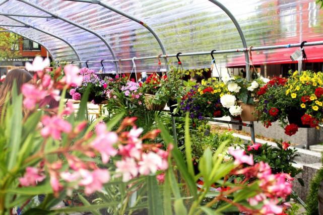Le Marché de fleurs d'Hochelaga est de retour... (PHOTO MARJOLÈNE RIVEST PHOTOGRAPHE, FOURNIE PAR LA SDC HOCHELAGA-MAISONNEUVE)