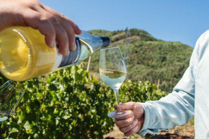 Les festivaliers du Festif! pourront boire du vin... (PHOTO FOURNIE PAR LA FAMILLE MIGNERON DE CHARLEVOIX)