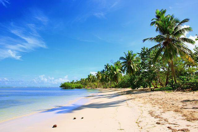 Punta Cana est réputée pour ses plages de rêve, ses habitants chaleureux et ses...