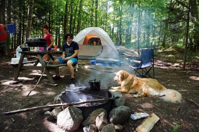 Quatre-vingts pour cent des établissements du réseau Camping... (PHOTO MARTIN CHAMBERLAND, ARCHIVES LA PRESSE)