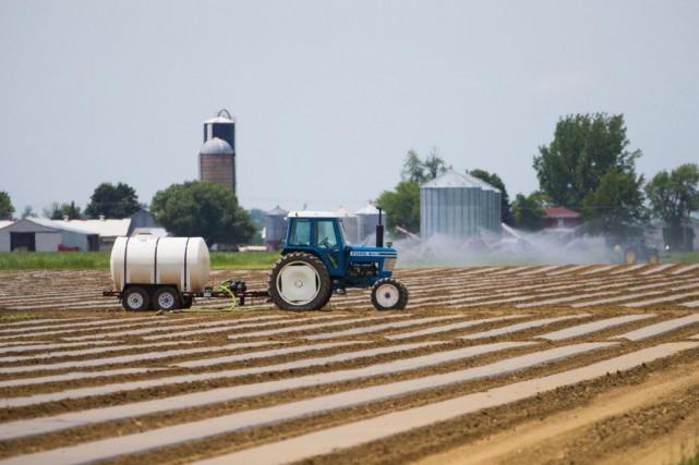 Il y a 3000 agronomes au Québec. Seulement... (PHOTO MARTIN TREMBLAY, ARCHIVES LA PRESSE)