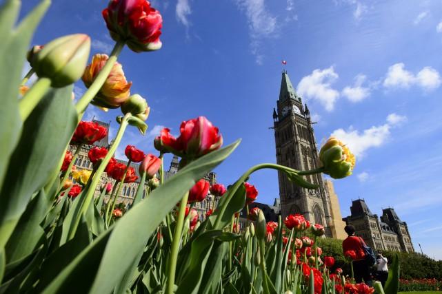 Un document interne obtenu par LaPresse canadienne indique... (PHOTO SEAN KILPATRICK, ARCHIVES LA PRESSE CANADIENNE)