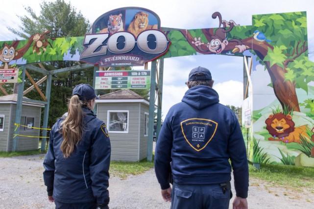 Zoo de Saint-Édouard: animaux maltraités, visiteurs mordus