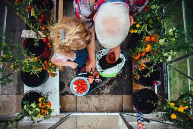Carnet du jardinier -Les quatre saisons de votre... (PHOTO GETTY IMAGES)