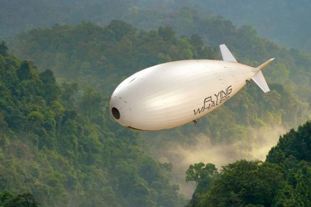 Grâce à Investissement Québec, l'entreprise française Flying Whalestravaillera... (PHOTO TIRÉE DU SITE DEFLYING WHALES)