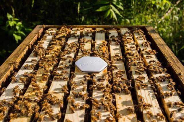 Nectar a conçu un capteur qui, une fois... (PHOTO FOURNIE PAR L'ENTREPRISE)