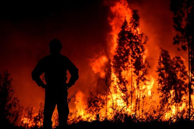 Un vaste incendie de forêt fait rage au Portugal