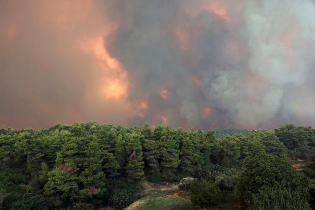 Grèce: important incendie sur l'île d'Eubée, 500habitants évacués