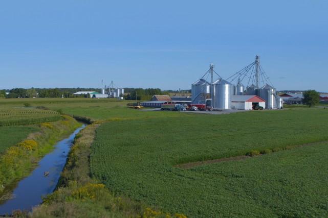 Pesticides: la rivière auxhorreurs
