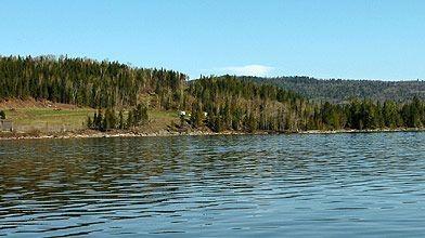L'environnement du Domaine sur le lac Témiscouata....