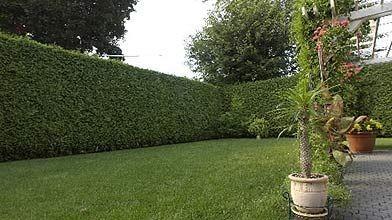 de chaque c t d 39 une haie mathieu perreault cour et jardin. Black Bedroom Furniture Sets. Home Design Ideas