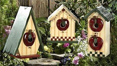 la cabane d 39 oiseaux se remplume marie france l ger cour et jardin. Black Bedroom Furniture Sets. Home Design Ideas