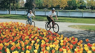 Festival canadien des tulipes à Ottawa...