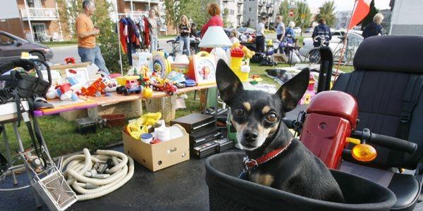 Recycler peut être amusant et payant, surtout si... (Photo Robert Skinner, La Presse)