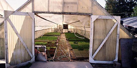 Si vous avez envie de cultiver «au chaud» tout l'hiver, c'est le...