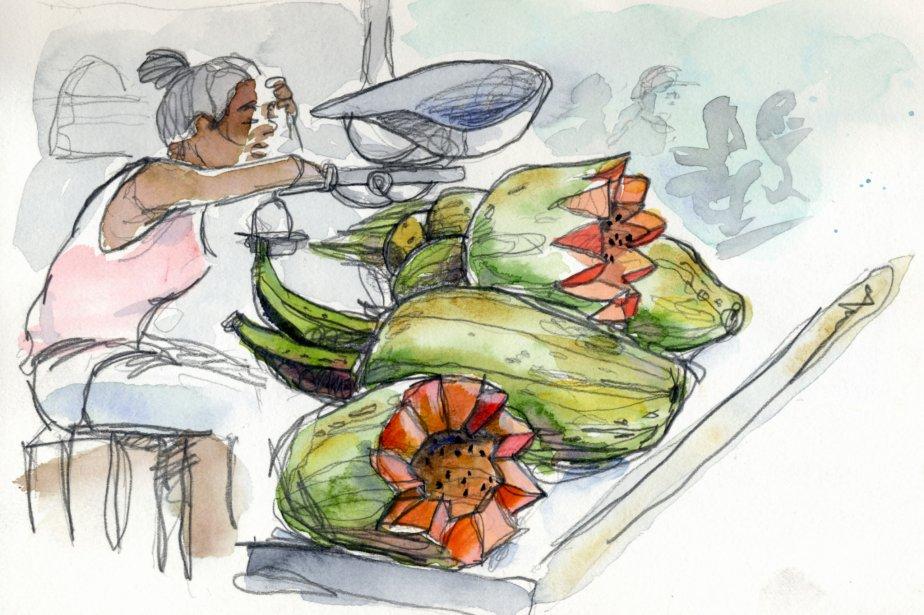 Les petits marchés publics abondent à La Havane. On y paie en pesos cubains. Presque tous les produits consommés à La Havane proviennent de moins de 50 kilomètres aux alentours. À cause de cela, Cuba fut le premier pays au monde à recevoir un prix en développement durable. | 1 mars 2011