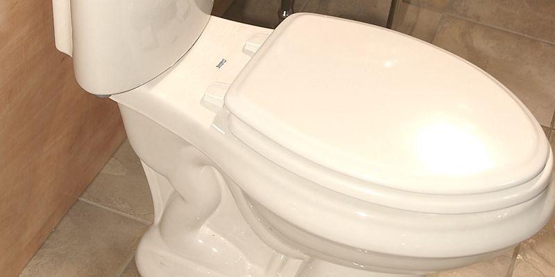 «On peut prétendre que la toilette à faible... (Photothèque Le Soleil)