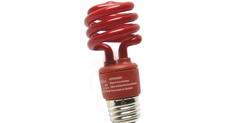 Les ampoules fluocompactes, bien qu'elles... (Photo André Tremblay, La Presse)