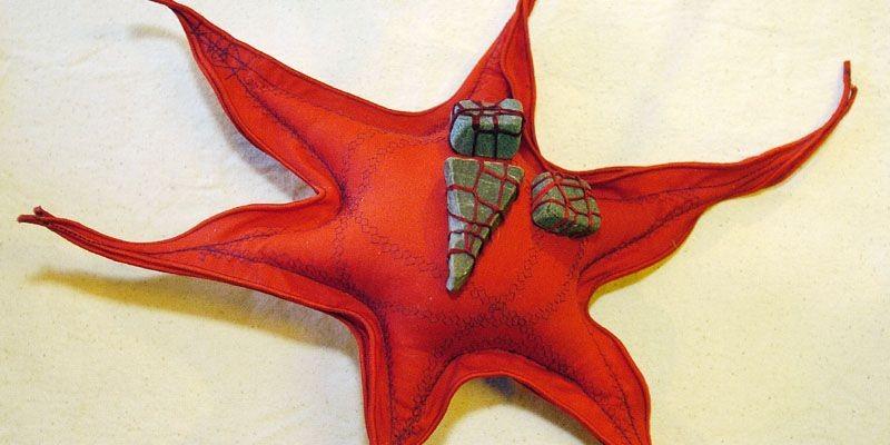 Coussin en forme d'étoile, orné de caillous, signé... (Photo Érick Labbé, Le Soleil)