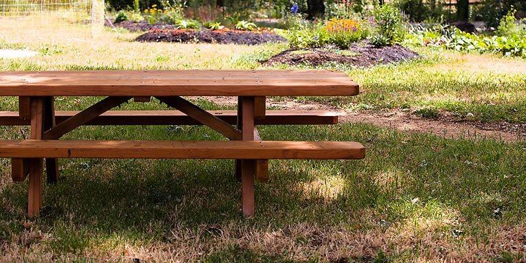 Si votre cour ou votre jardin est partiellement ombragé, vous... (Photo Clipart)
