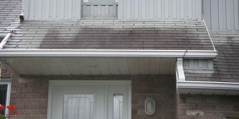 Des champignons microscopiques ont proliféré sur cette toiture... (Photo: Habitation Expert-Conseil)
