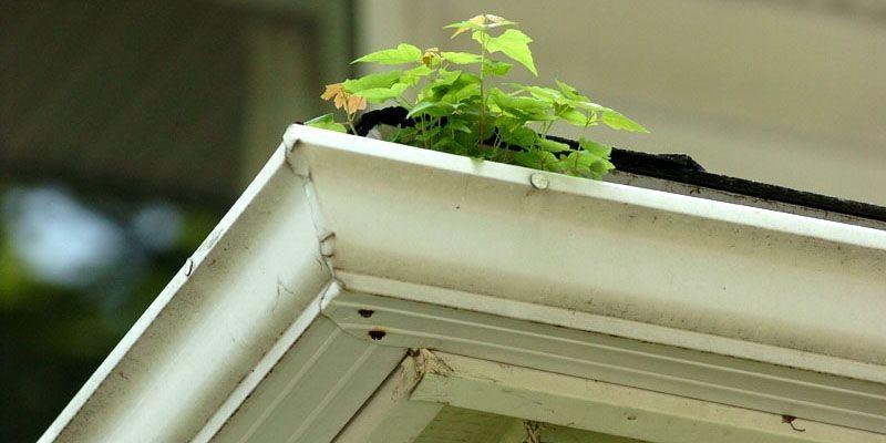 Il est préférable de nettoyer les gouttières avant... (Photo archives Le Soleil)
