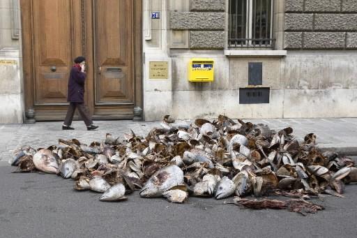 Greenpeace a déversé lundi matin 5 tonnes de têtes de thon... (Photo: Reuters)