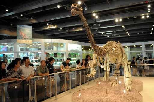 «À vendre: dinosaure, épine dorsale 90% complète»: dix ans après... (Photo: AFP)