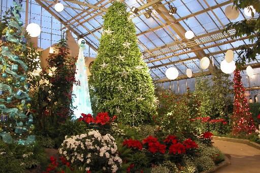 La Grande serre du Jardin botanique parée pour... (Photo fournie par le Jardin botanique)