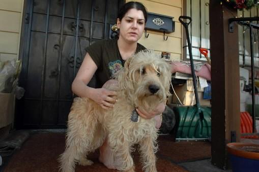 Gypsy Lawson, 29 ans, avait réussi à passer... (Photo: AP)