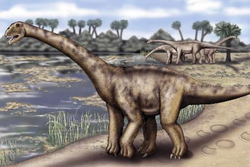 Illustration représentant un sauropode géant.... (Photo: AFP)