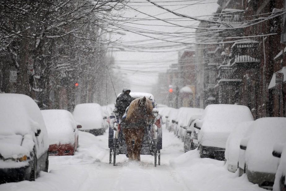 Bien emmitouflé, le conducteur de cette calèche transportait... (Photo: Bernard Brault, La Presse)