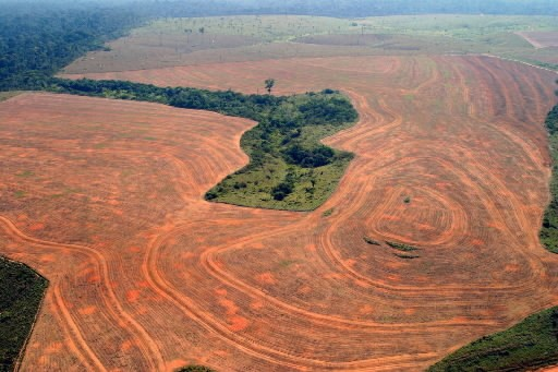 La déforestation en Amazonie... (Photo: AP)