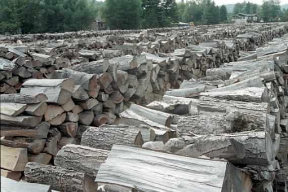 Les mauvaises nouvelles dans le domaine forestier se poursuivent.... (La Presse)