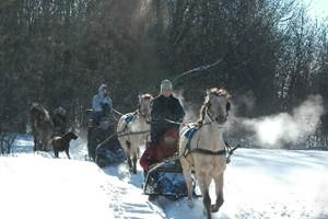 Le poney-luge permet de faire travailler les poneys... (Photo fournie par Tourisme Laval)
