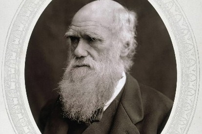Portrait de Charles Darwin... (Photo: AP)
