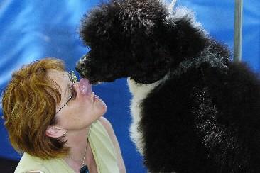 Un chien d'eau portugais et sa maîtresse... (Photo: archives PC)