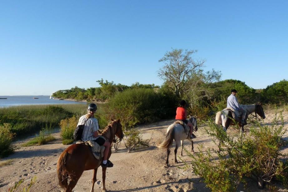 Une randonnée à cheval est une merveilleuse façon... (Photo: Diane Turcotte, collaboration spéciale)